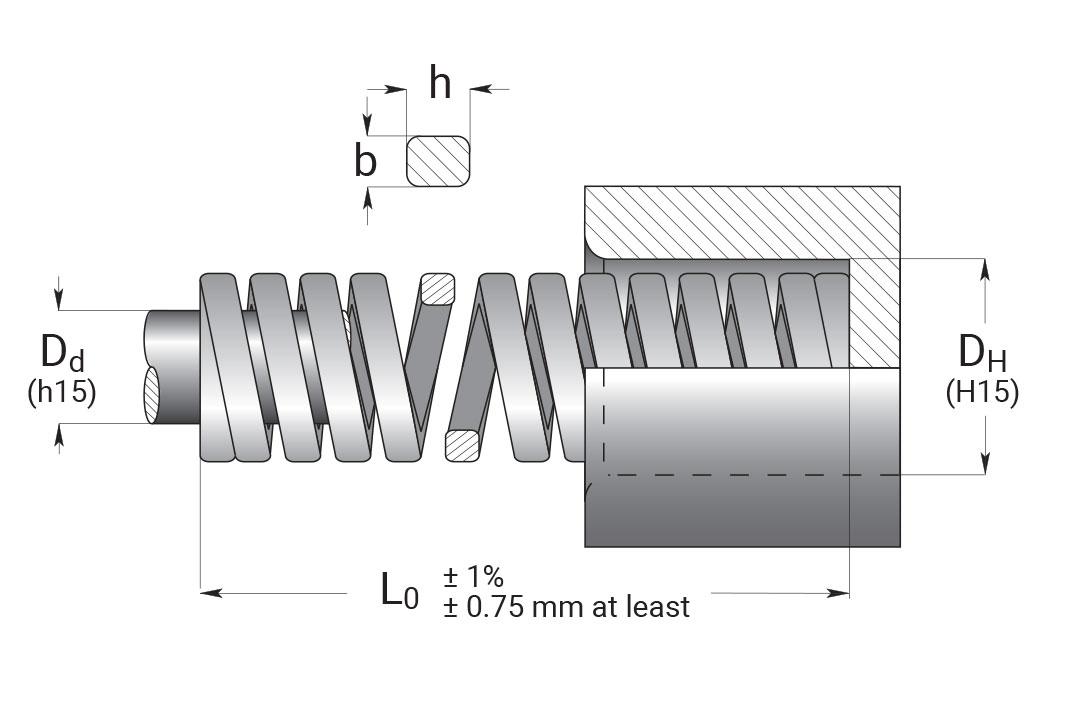 a-wire-die-springs-technical-view-special-springs.jpg